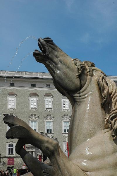 馬も水芸。 ザルツブルグのお馬さん。