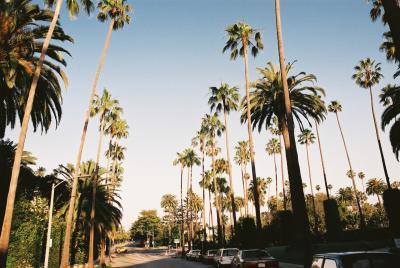 【再編集中】13th:アメリカ ~爆走10000マイル!西大陸ドライブ一人旅23日間~(Part21:Final Los Angeles,CA編)