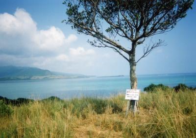 2001年 小浜島ちゅらさんロケ隊追っかけの旅