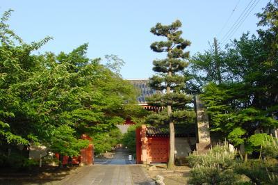 真如堂から金戒光明寺へ☆2005年5月3日