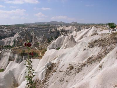 2005トルコ(カッパドキア)