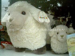 羊を巡る旅 2005/9/24 Cheltnham→Broadway