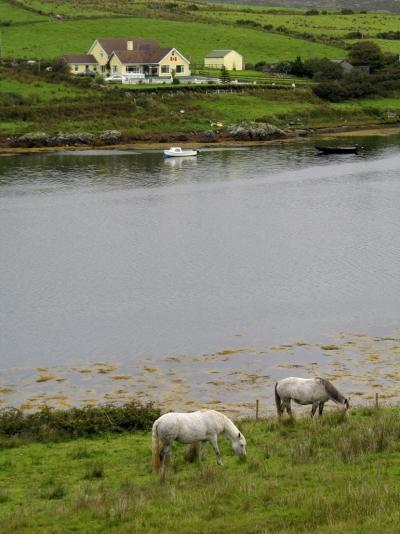 2004夏 アイルランド・スコットランド・イギリス湖水地方の旅11(アイルランド・スカイロードとコネマラ国立公園編)