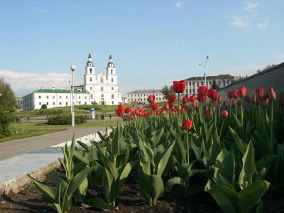 チェルノブイリ原発事故の最大被害国