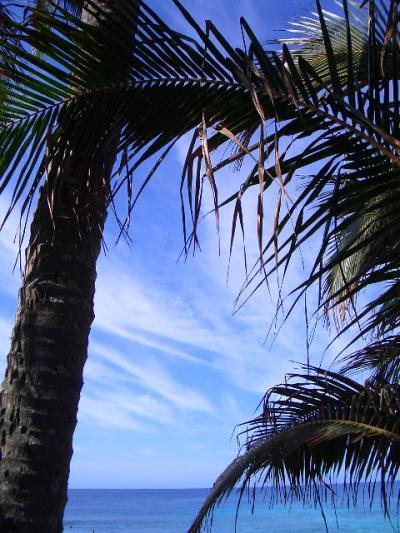 2006.01 ハワイ