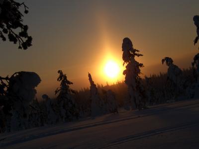 オーロラ見えたか?! (Part3) フィンランド(4日目)