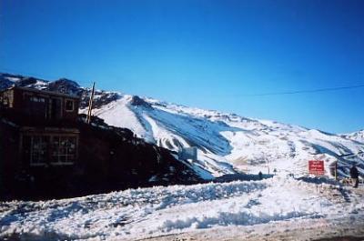 20年に一度の大雪
