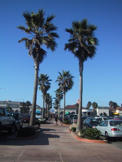 南カリフォルニアドライブ3 サンディエゴ