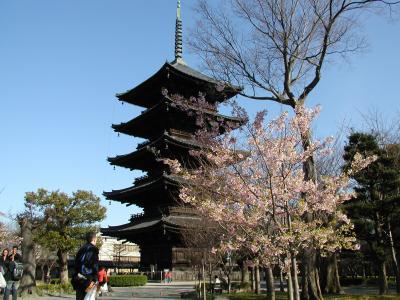 Kyoto@2006March 春の息吹き、空気柔らかい京をたずねて
