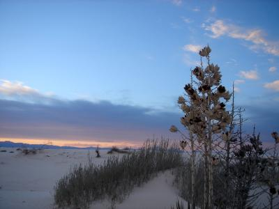 White Sands (2)  04/01/06