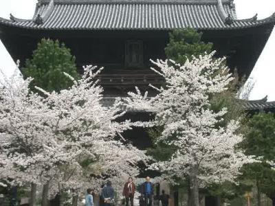 哲学の道には桜より人出の方が多いくらいでした
