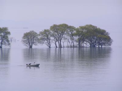 ぐるっと琵琶湖一周、4泊5日―その1:湖北、奥琵琶湖の自然に親しむ