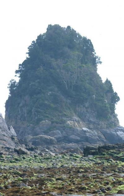 上関/長島