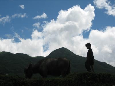 GW北ベトナム旅行−サパ、ラオチャイ村、タバーン村トレッキング編