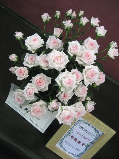 国際バラとガーデニングショウに行ってきました!その1:プロローグ&切り花・鉢植え・盆栽