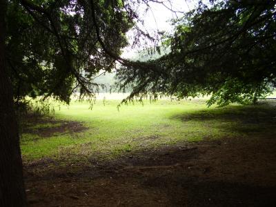 雨の砧公園・馬事公苑散歩