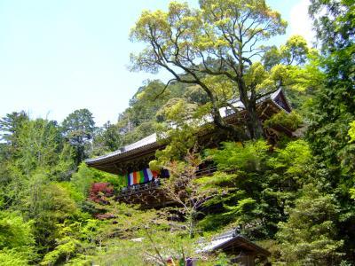 2006GW姫路