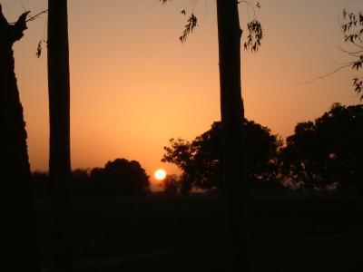 インド仏跡参拝と世界遺産の旅?【序章】