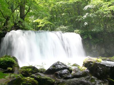 青森県:奥入瀬渓谷