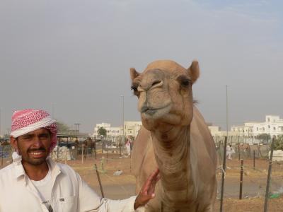 UAE・オマーン旅行記−その3