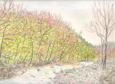 春の秋神川