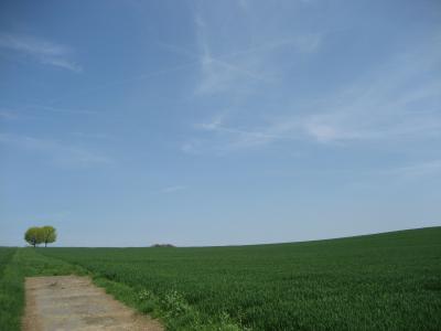 ドイツ1600kmレンタカー紀行−1