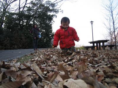 近所の散歩 2006年 1月 倉敷にて