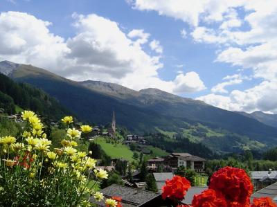 2003年夏の旅 オーストリア?