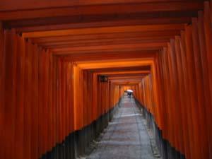 早春の京都レンタサイクルの旅 3日目