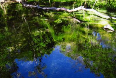 青の洞窟と美しいスクリ川・・・ボニート