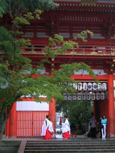 京都遠征?雨の京都篇