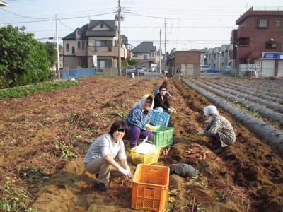 芋掘り部隊2005