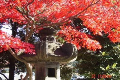 能仁寺の秋