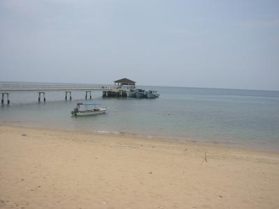 ティオマン島でダイビングライセンスゲット!