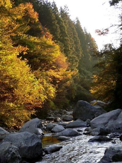 尾白川渓谷の紅葉散策
