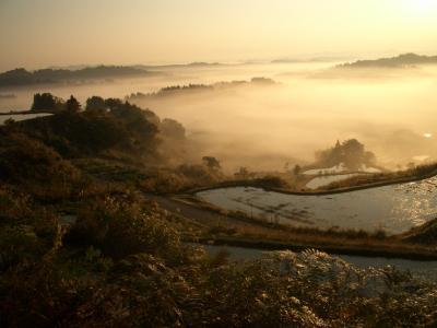 清秋 秋を彩る日本の美