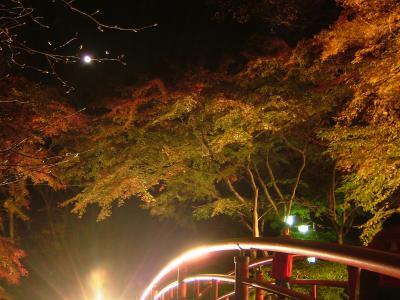 伊香保温泉・河鹿橋の紅葉を見てきました。