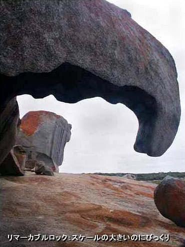 2003年オーストラリア本土の旅(7)カンガルー島ツアー