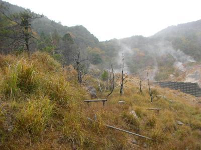 霧島温泉、好熱細菌サンプル採取お手伝い旅行
