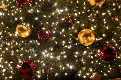 2006 SF クリスマス・ライトアップ  ☆サンフランシスコ・ベイエリア紀行(7)☆