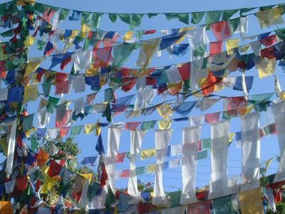 雪の残るヒマラヤを望むマナリからインドのチベット・ダラムサラへ♪