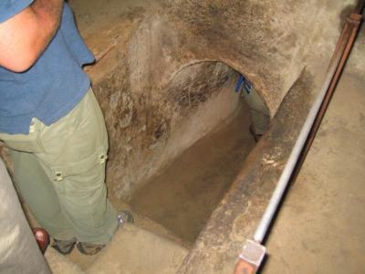 アリの巣のようなクチトンネル?