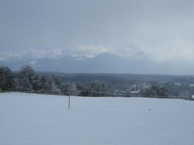 新春!初スキー