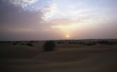 ドバイ旅行記 2 ~砂漠のマラドーナ~【アルマハ編Part1】