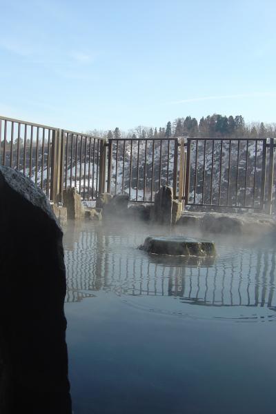 日本三大薬湯「松之山温泉」と冬の「美人林」