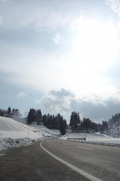 春を待つ「山古志2007」