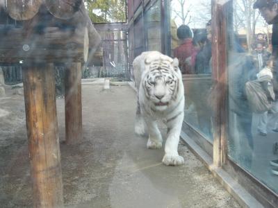 寒かったぁ  東武動物公園