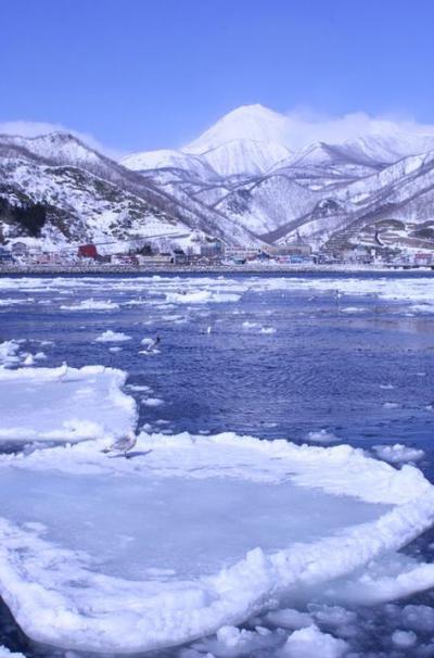 暖かい!?厳冬期の道東−四日目は感動の流氷体験