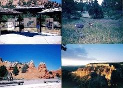 LA,ブライスキャニオン&ラスベガス旅行 1995年9月