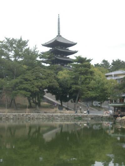 興福寺で藤原家の繁栄の跡をしのぶ
